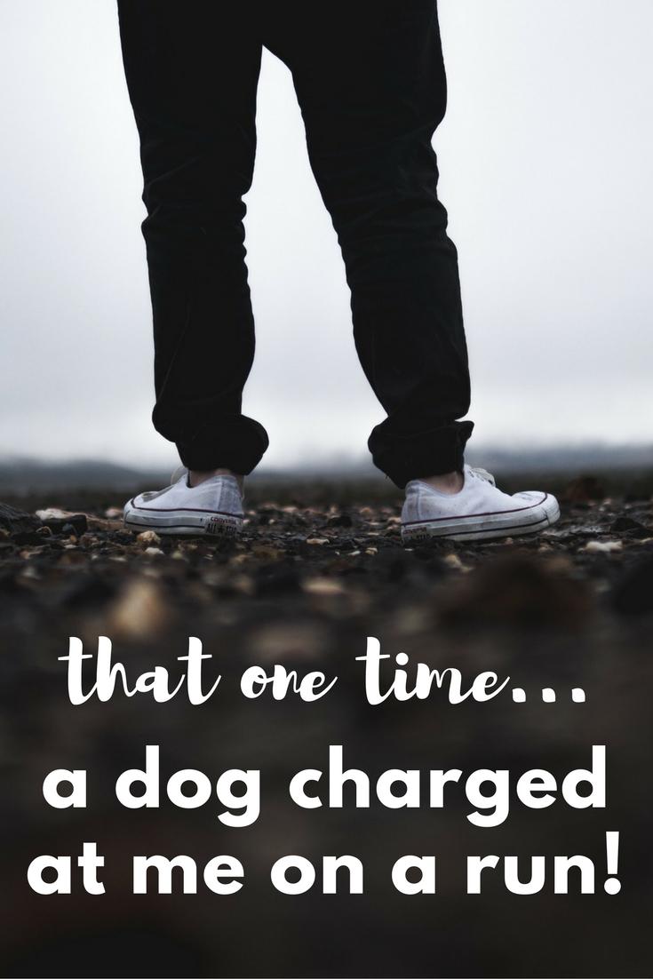 Encountering a Mean Dog on a Run