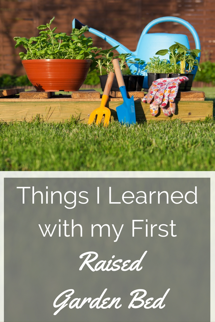 6 Things I Learned with my First Raise Garden Bed
