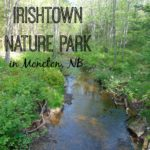 Irishtown Nature Park in Moncton, NB