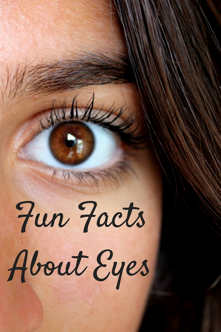 Fun Facts About Eyes!