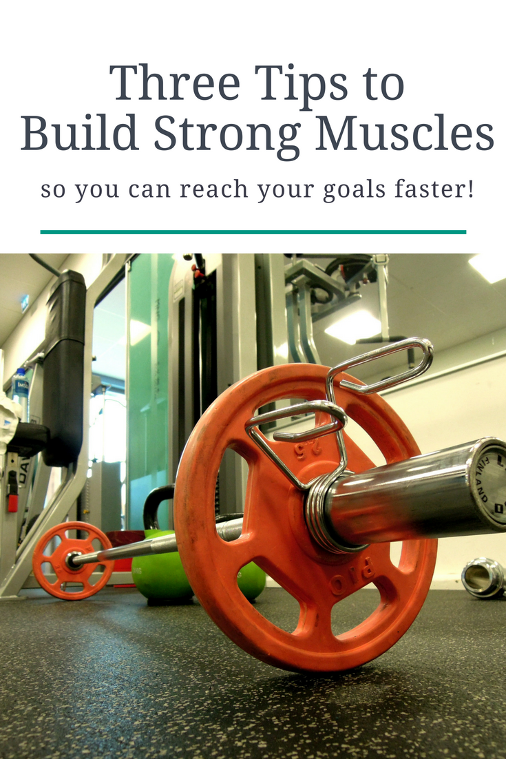Gain muscle fast with these muscle building tips!
